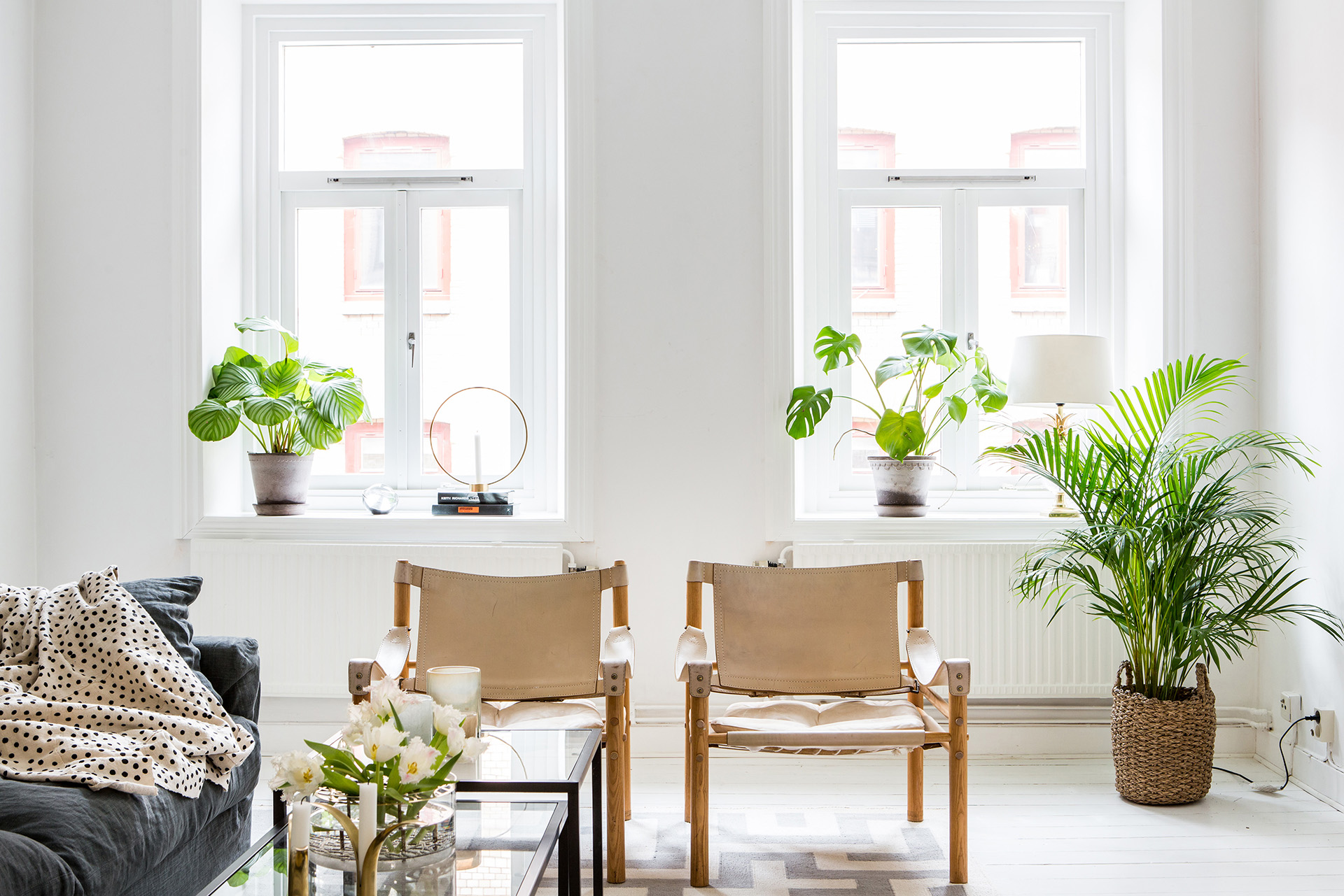 Scandinavisch-Interieur-Planten-Welke